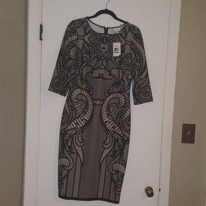 NWT ECI New York Stretch Dress